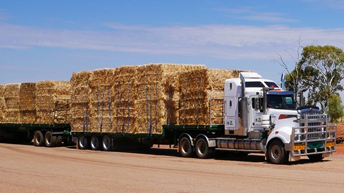 Truck carrying hay